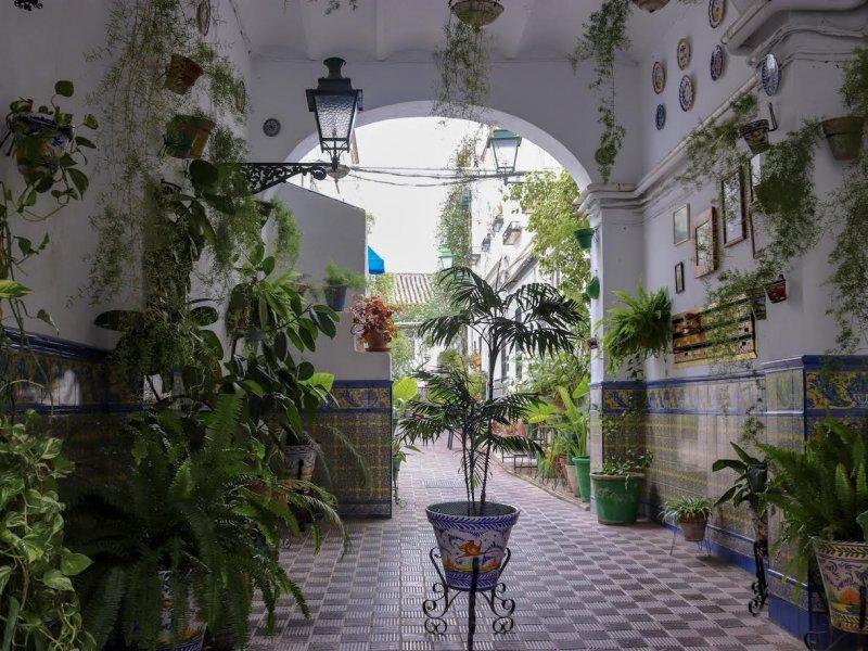 e8fb86c39a3a Barrio de Santa Cruz is one of the most gorgeous neighborhoods in Sevilla